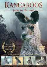 Kangaroo Faces DVD